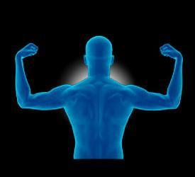 Bodybuilder's supplement