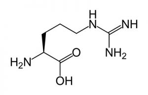 trimassix-review-ingredients-l-arginine