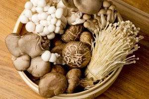 various edible mushrooms in basket