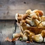 edible mushrooms in basket can be consumed with Progentra
