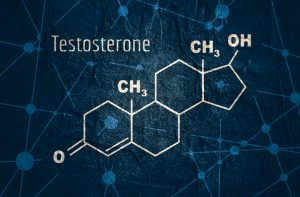 testosterone structure